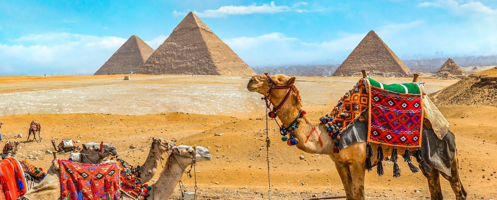 das Plateau von gizehTagesausflug nach Kairo mit dem Flugzeug ab Marsa Alam