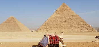 Private 1 day to Cairo to the pyramids of soma bay & Safaga