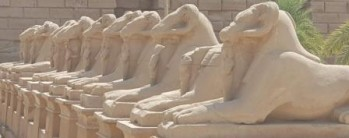 1 day to Luxor by plane from Cairo