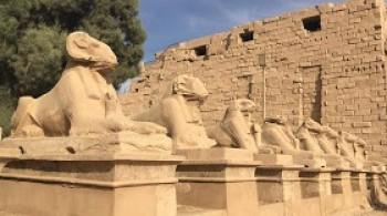 die spingen in karnak tempel