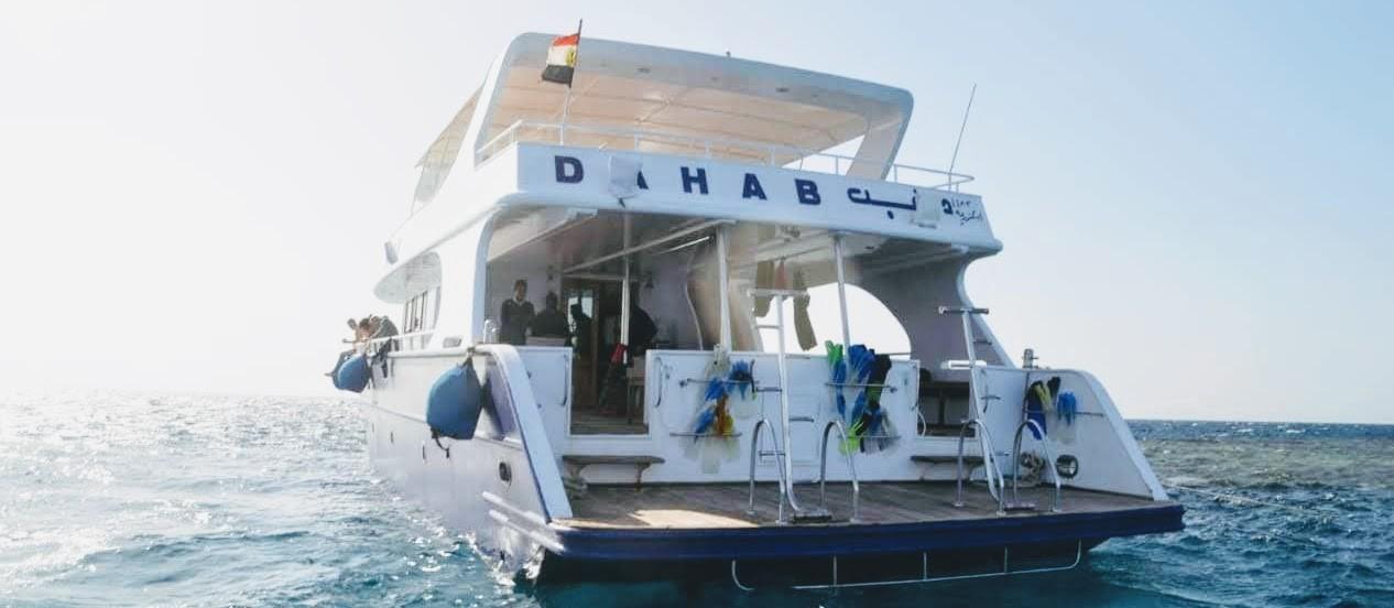 makadi bay dolphin tour