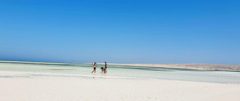 Delfin Tour mit dem Speedboot ab Hurghada
