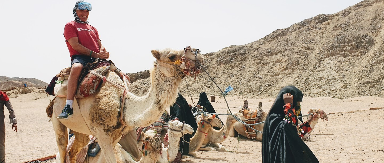 kamelritt auf der dune buggy tour ab sahl hasheesh und makadi bay