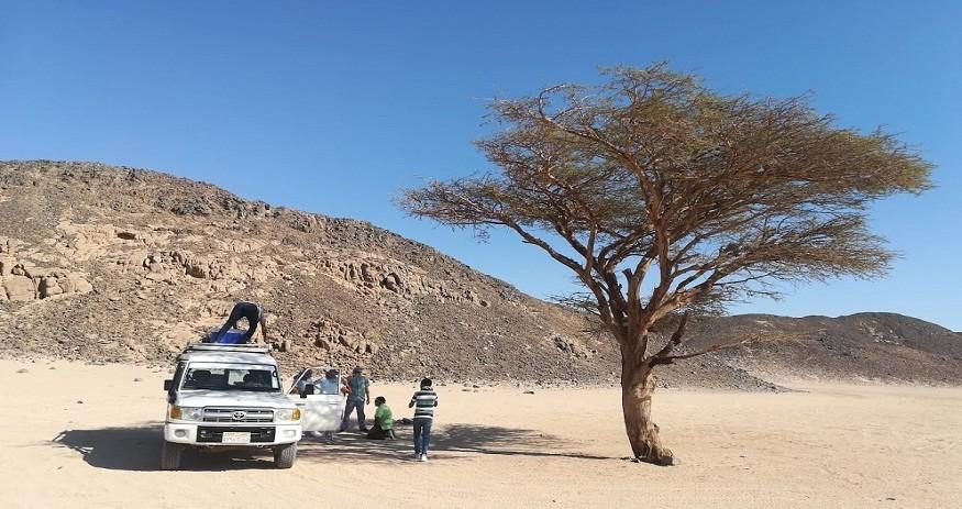 jeep safari hurghada, die Oestliche Wueste