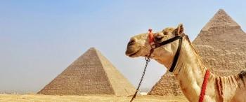 die Pyramiden von cheops und chephren auf dem plateau von gizeh