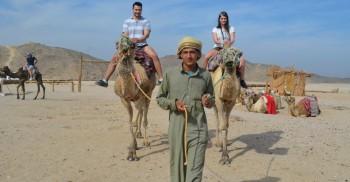 kamel reiten in Sahl hasheesh und Makadi bay