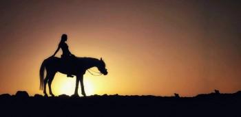 reiten und schwimmen mit den Pferden in El Gouna