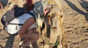 Super Safari Ausflug ab El Gouna